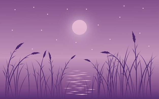 Night scene illustration with grass, moon and stars