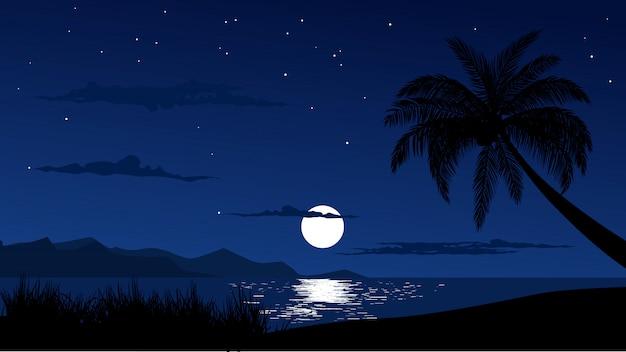 Night sky at tropical beach
