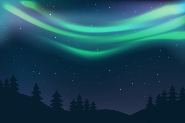 Night sky with aurora over spruce forest green north light and stars polar light glowing in winter