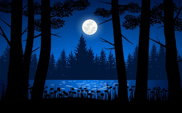 Night time in forest with silhouette of trees and full moon