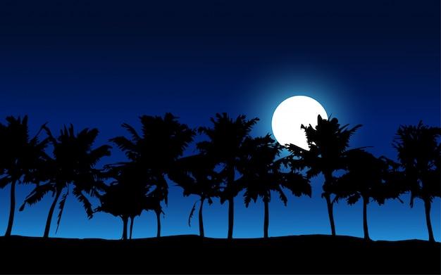 열 대 해변에서 밤 시간