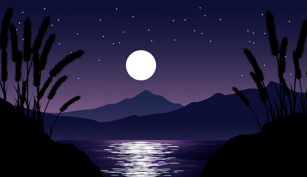 Night view landscape with mountain, lake, moon and stars