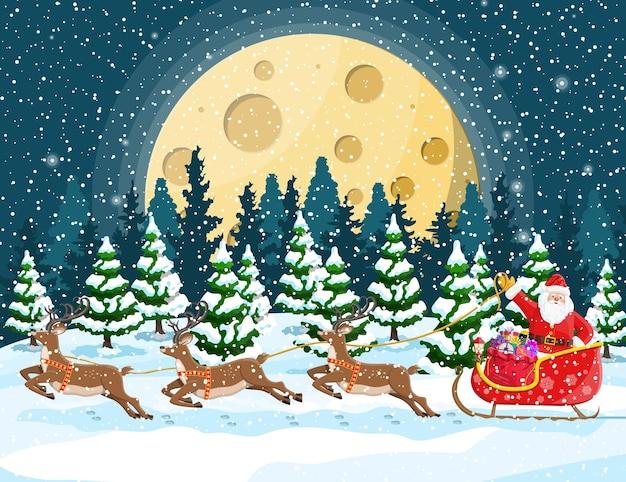 モミの木の森と夜の冬の風景