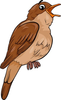 Nightingale bird cartoon illustration
