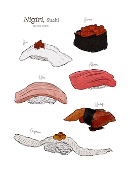 Nigiri set, ika, ikura, akami, otoro, unagi and engawa. hand draw sketch vector.