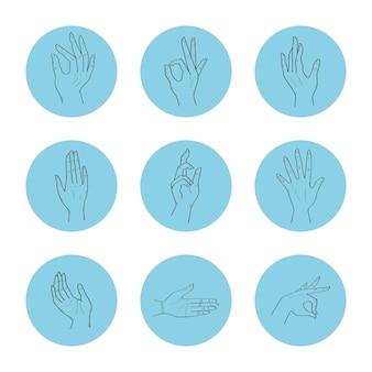 Девять выражений рук