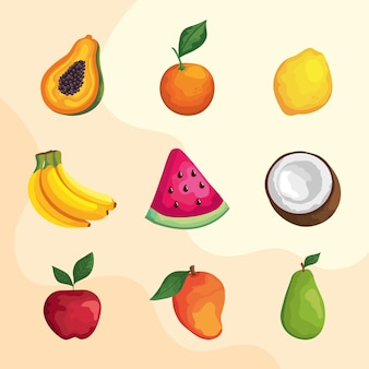 Nine tropical fruits