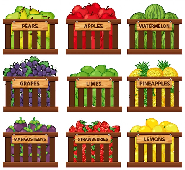 Nine types of fruits in wooden baskets