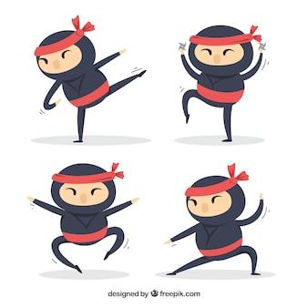 Ninja character collection