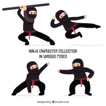 Коллекция персонажей воинов ниндзя