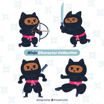 Collezione di guerrieri ninja