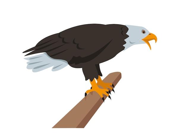 북미 대머리 독수리 지점에 앉아입니다.