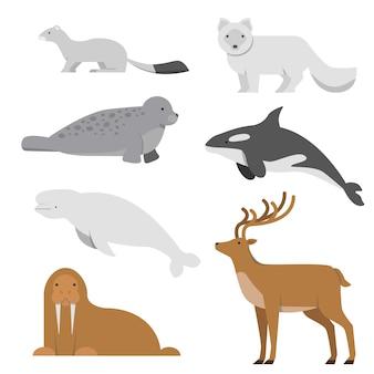 北と北極の動物。フラットスタイルのベクトルイラスト
