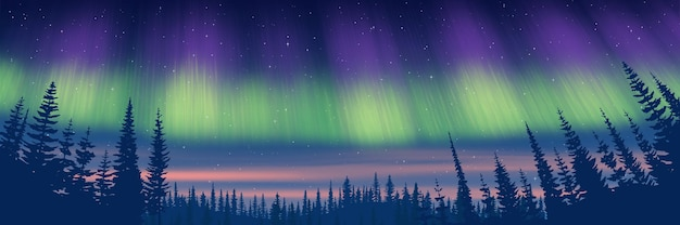 Northern landscape at dusk and with aurora borealis