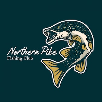 Northern pike fishing club illustration