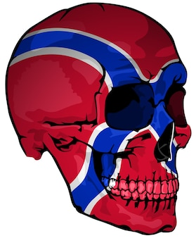 頭蓋骨に描かれたノルウェーの旗