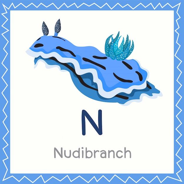 Nudibranch動物のためのnのイラストレーター