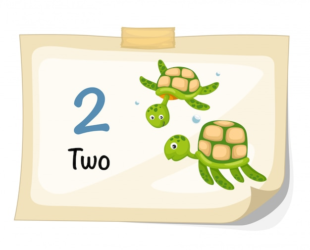 Number two turtle vector