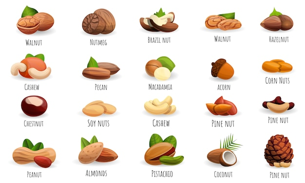 Nut icon set