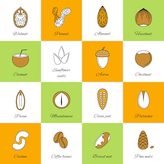 Nut icons collection