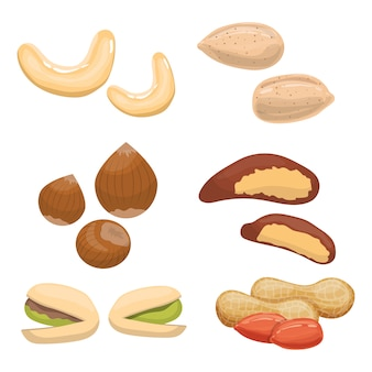 Nut set design illustration isolated on white background