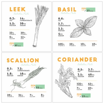 Nutrition facts of leek, basil, scallion and coriander.