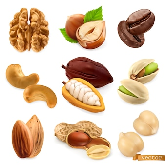Орехи и бобы. грецкий орех, фундук, кофе, кешью, какао, фисташки, миндаль, арахис, нут, векторный набор