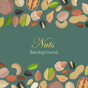 Nuts background concept      .