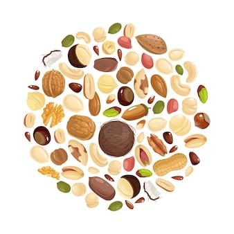 Фон орехов. различные орехи в форме круга. арахис, фундук и фисташки, кешью и пекан, грецкий орех. бразильский орех и миндальное векторное понятие еды