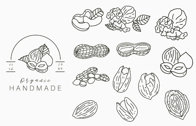 Логотип коллекции орехов с лесным орехом, грецким орехом, арахисом. векторная иллюстрация для значка, логотипа, наклейки, печати и татуировки