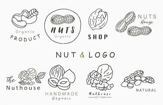 Nuts collection logo with hazelnut,walnut,peanut.vector illustration for icon,logo,sticker,printable and tattoo