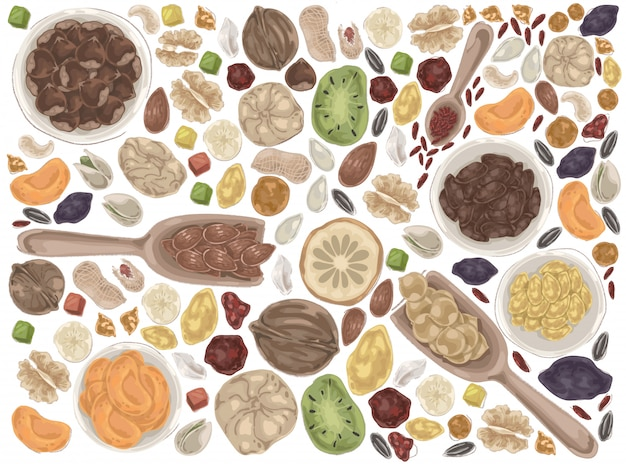 Nuts and dried fruits doodle set.