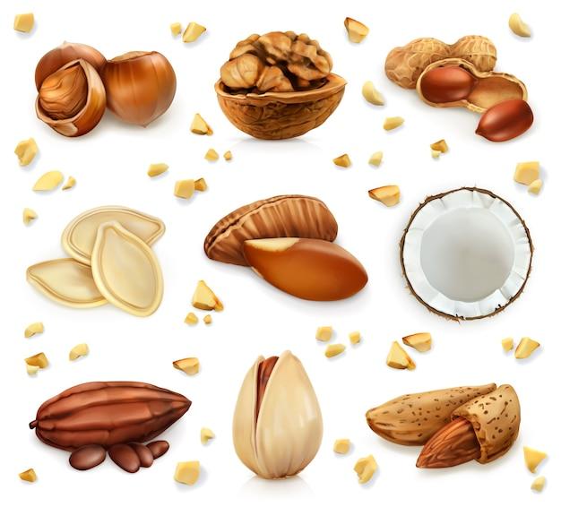 Орехи в скорлупе, векторный набор иконок