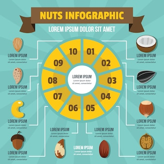 Nuts infographic, flat style