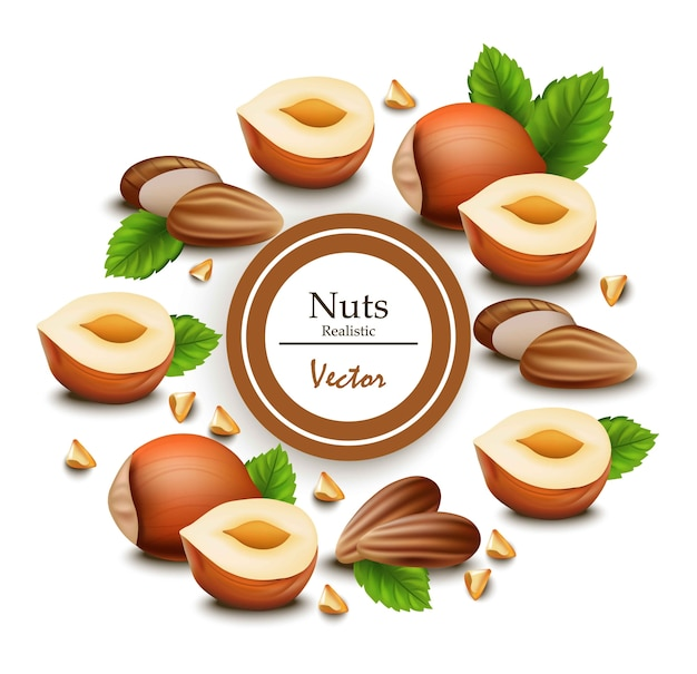Nuts realistic. template label designs