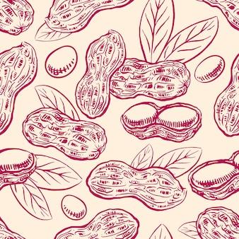 ナッツ。ピーナッツ豆と葉とのシームレスな背景。手描きイラスト