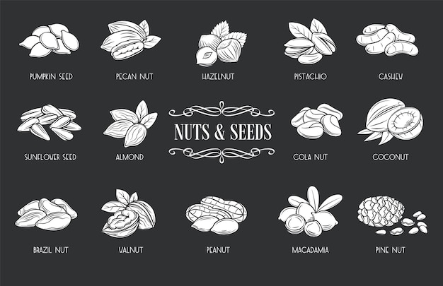 Nuts and seeds glyph icons. white on black illustration cola nut, pumpkin seed, peanut and sunflower seeds.