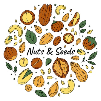 Nuts and seeds set of icons in the doodle style illustration