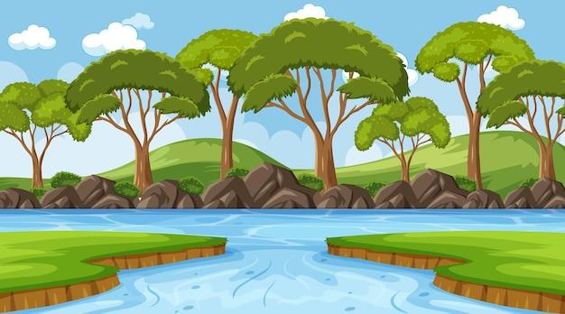 昼間の森の中の川のあるニュアンスシーン