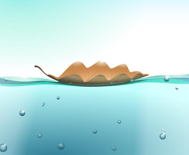 Foglia di quercia sulla superficie dell'acqua con bolle e ombre