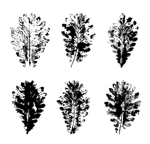 오크 잎 인쇄물 세트에 고립 된 흰색 배경. 벡터 일러스트 레이 션