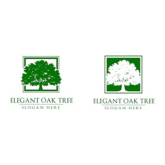 Логотип oak tree