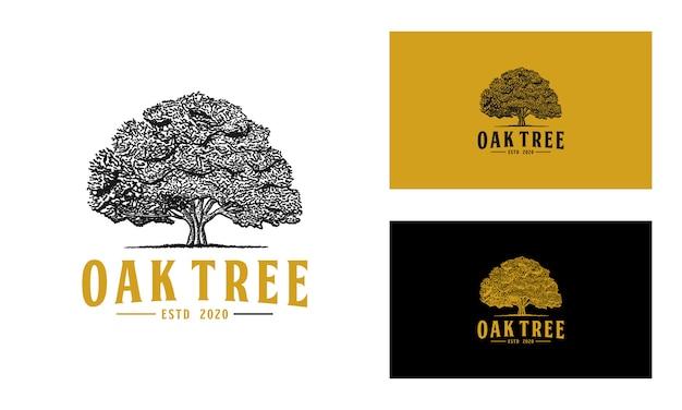 오크 나무 로고
