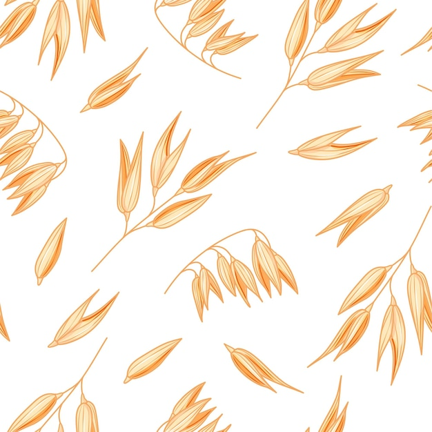 Oat seamless pattern on white background. vector oatmeal illustration.  spelt wheat plant pattern.