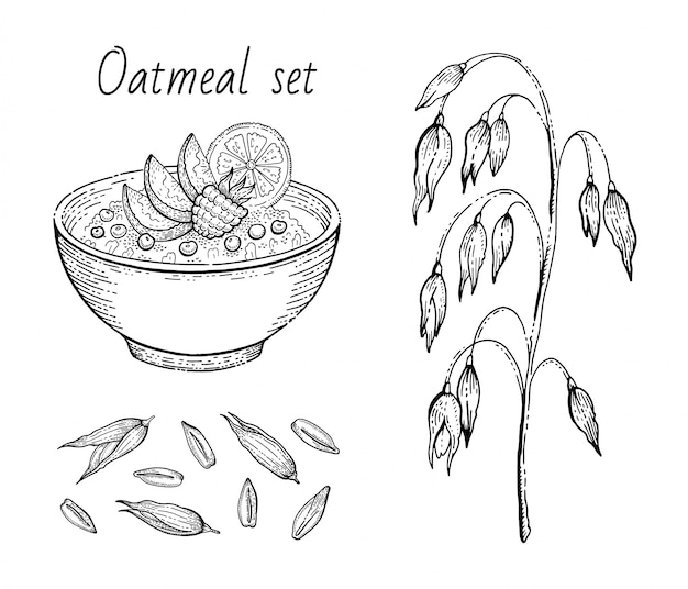 Oats sketch. oatmeal porridge bowl with milk, fruit, oat ear, grain. engraved icon art. line muesli, flake for healthy sweet breakfast food design. illustration set.