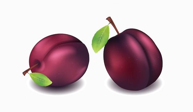 Объект, набор свежих фиолетовых слив
