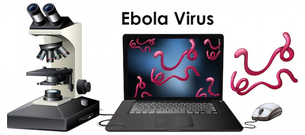 Object of virus ebola