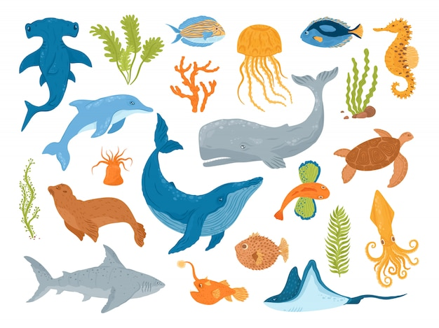 海と海の動物と魚、イラストのセット。海洋海の水中の生き物や哺乳類、クジラ、サメ、イルカ、クラゲ、カメ、タツノオトシゴ。水族館の海の動物。