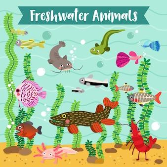 Ocean animal cartoon