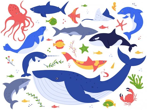 海の動物。かわいい魚、シャチ、サメとシロナガスクジラ、海洋動物、海の生き物イラストセット。海底の世界パック。海藻、藻類、水生植物のクリップアートコレクション